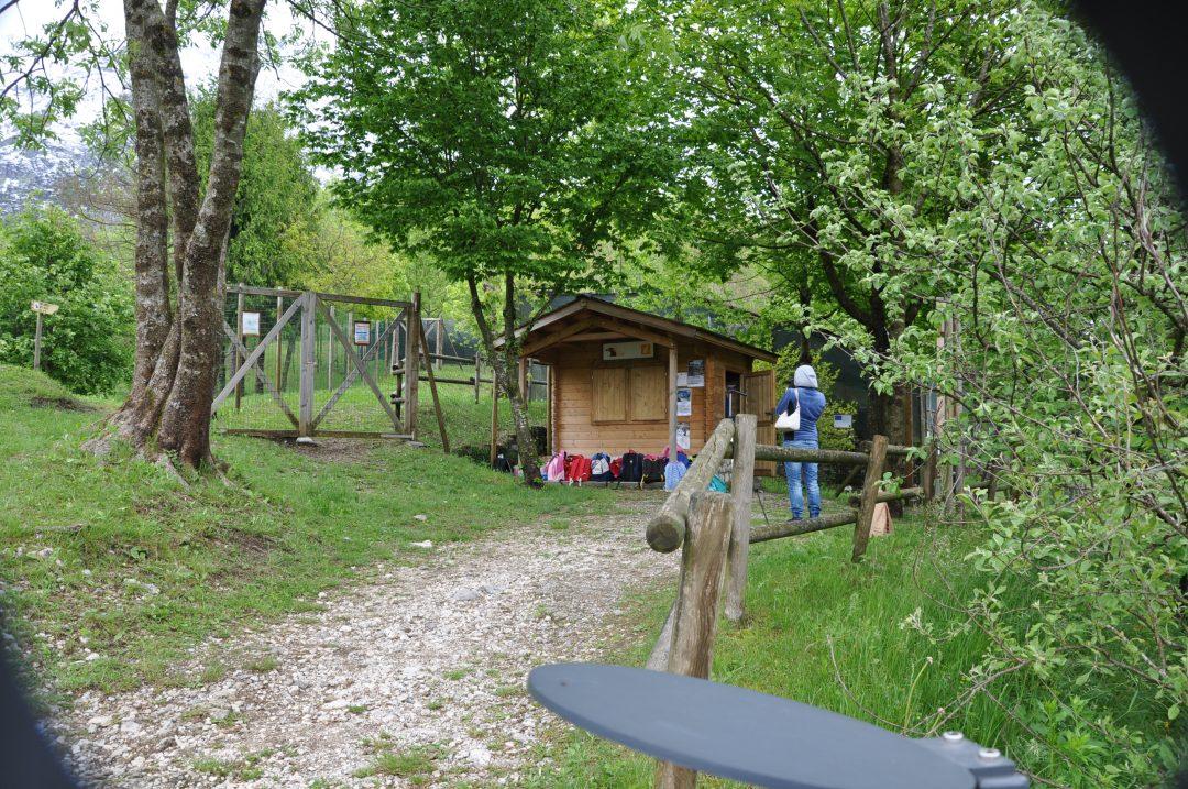 Friuli: ritorno alla natura nelle treehouse