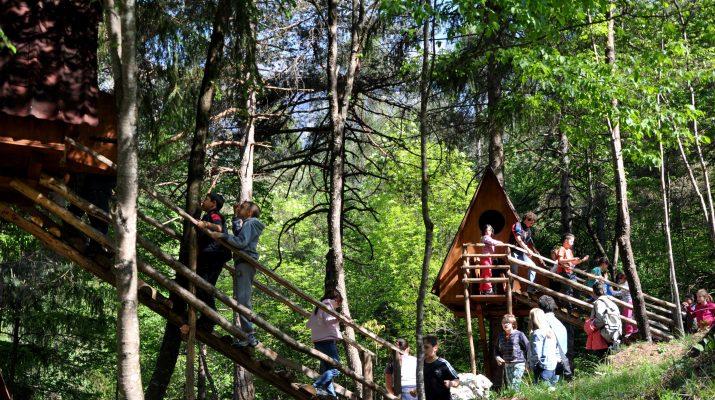 Foto Friuli: ritorno alla natura nelle treehouse