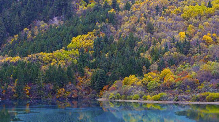 Foto Foliage: le foto più belle