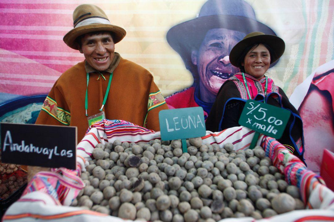 Dal cebiche al pisco: il gusto del Perù