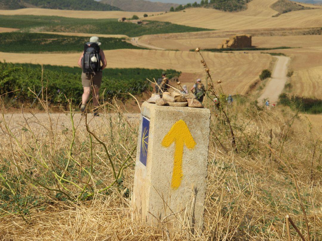 10 viaggi slow da fare in Italia e in Europa