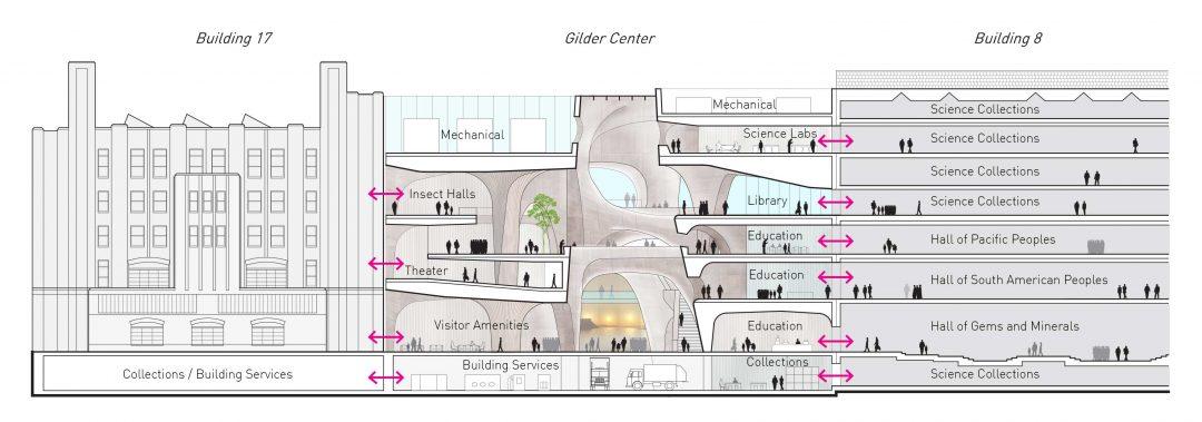 New York: sarà tutto nuovo il Natural History Museum