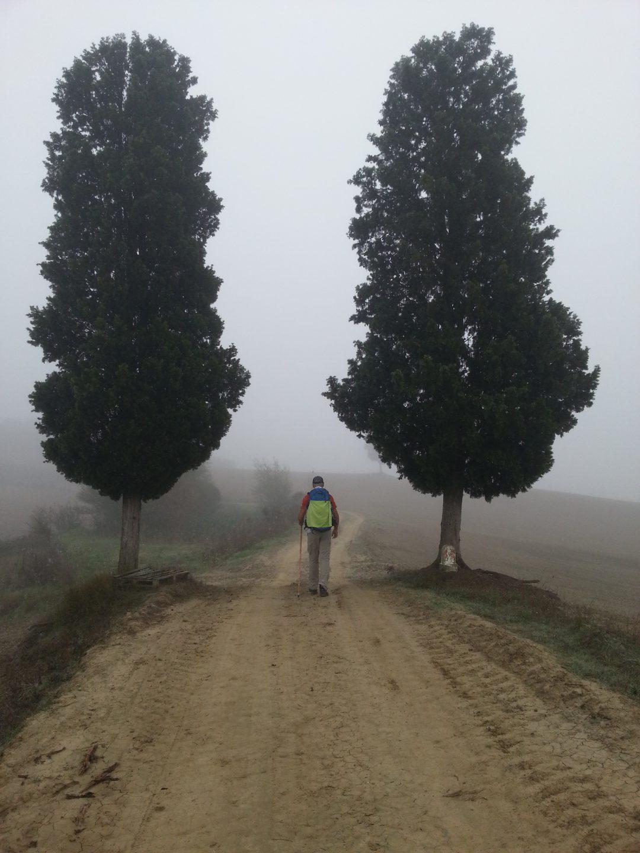 Lungo la Via Francigena