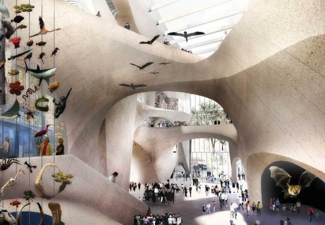 Museo Storia Naturale New York.New York Nel 2019 Il Nuovo Museo Di Storia Naturale Dove Viaggi