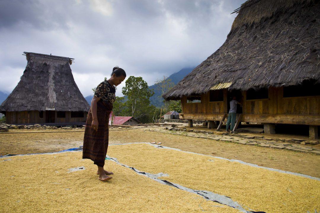 Flores e Sumba, l'Indonesia misteriosa e selvaggia