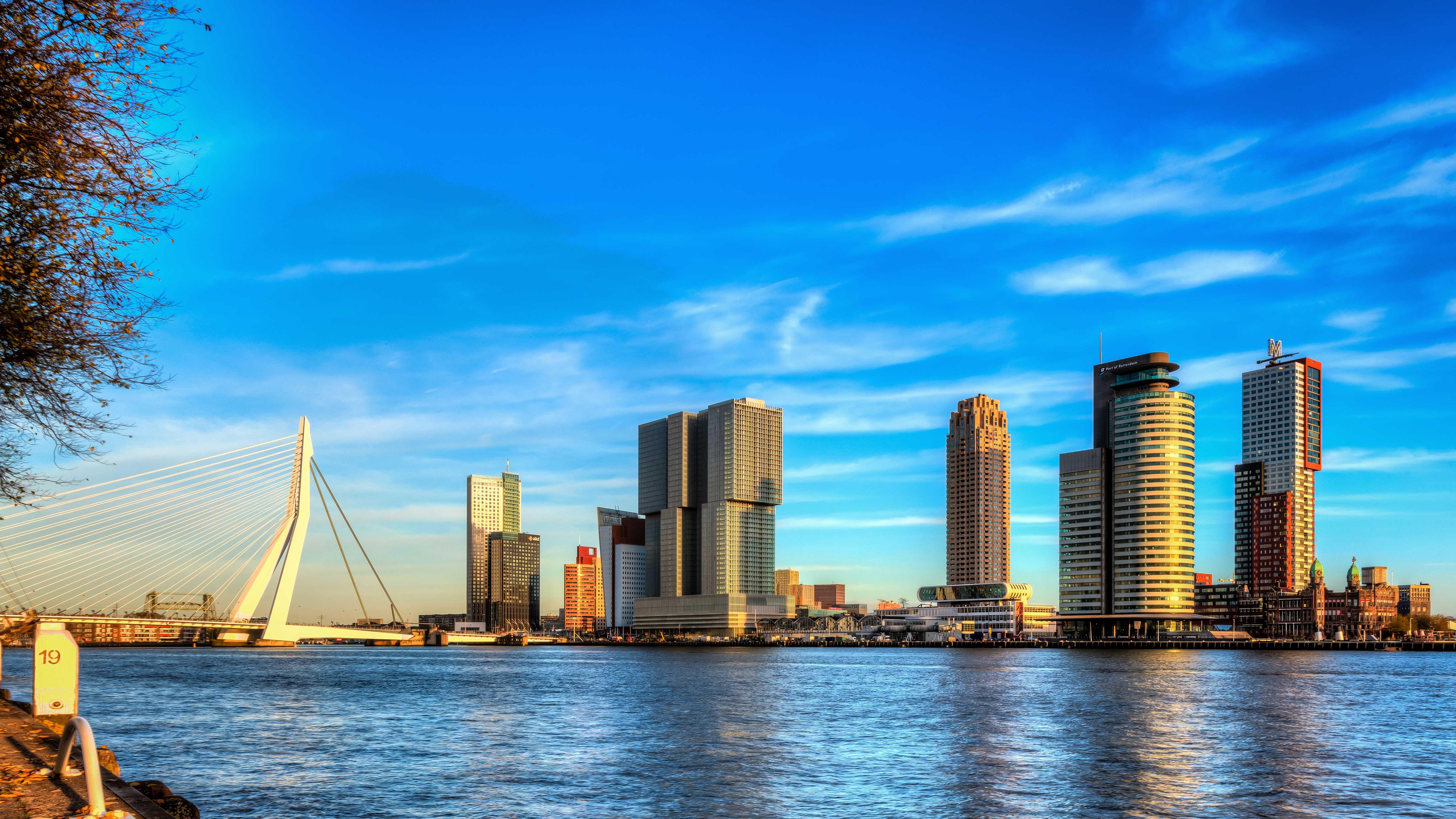 Rotterdam una citt in gran forma dove viaggi for Una citta sulla garonna