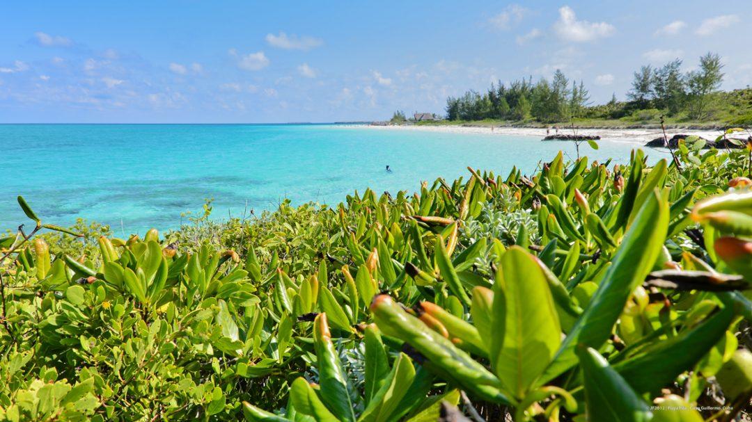 Vacanze a Cuba, tra città coloniali e spiagge bianche