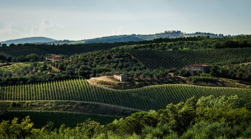 1-paesaggio-Chianti-classico-2.jpg