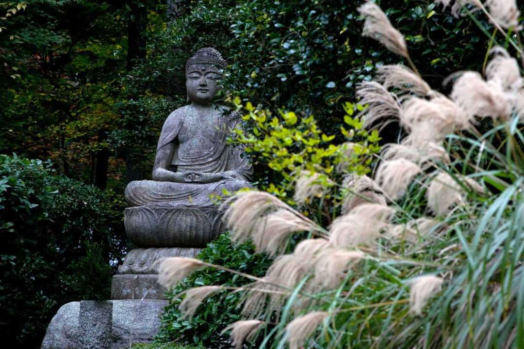 Giappone: nei giardini, tra natura e spiritualità
