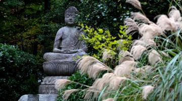 114-Kyoto-Tempio-Ryoanji-statua-Buddha