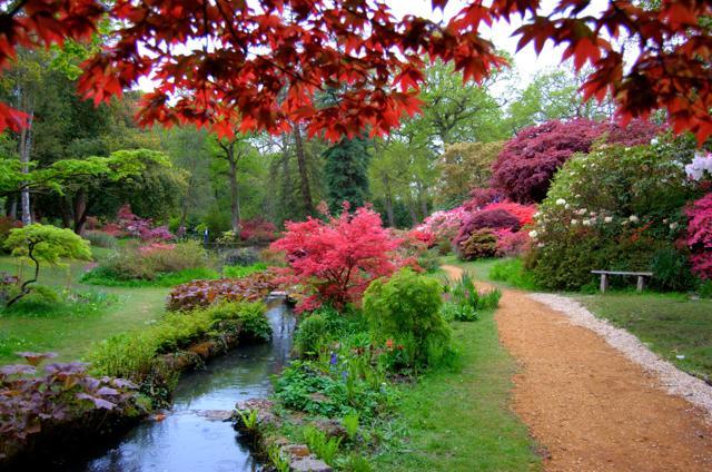 70 giardini di primavera, da vedere da casa (per ora)