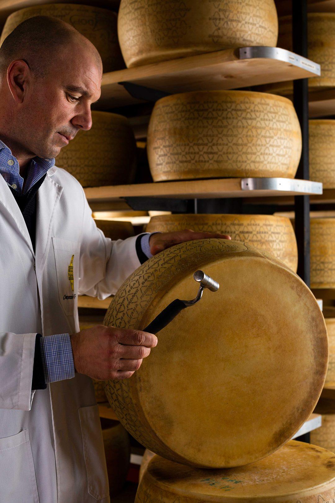 Grana Padano, il tesoro della Grande Pianura