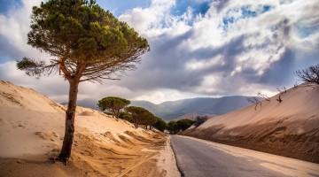 TARIFA_on-the-road_2069_ph_Marisa_Montibeller