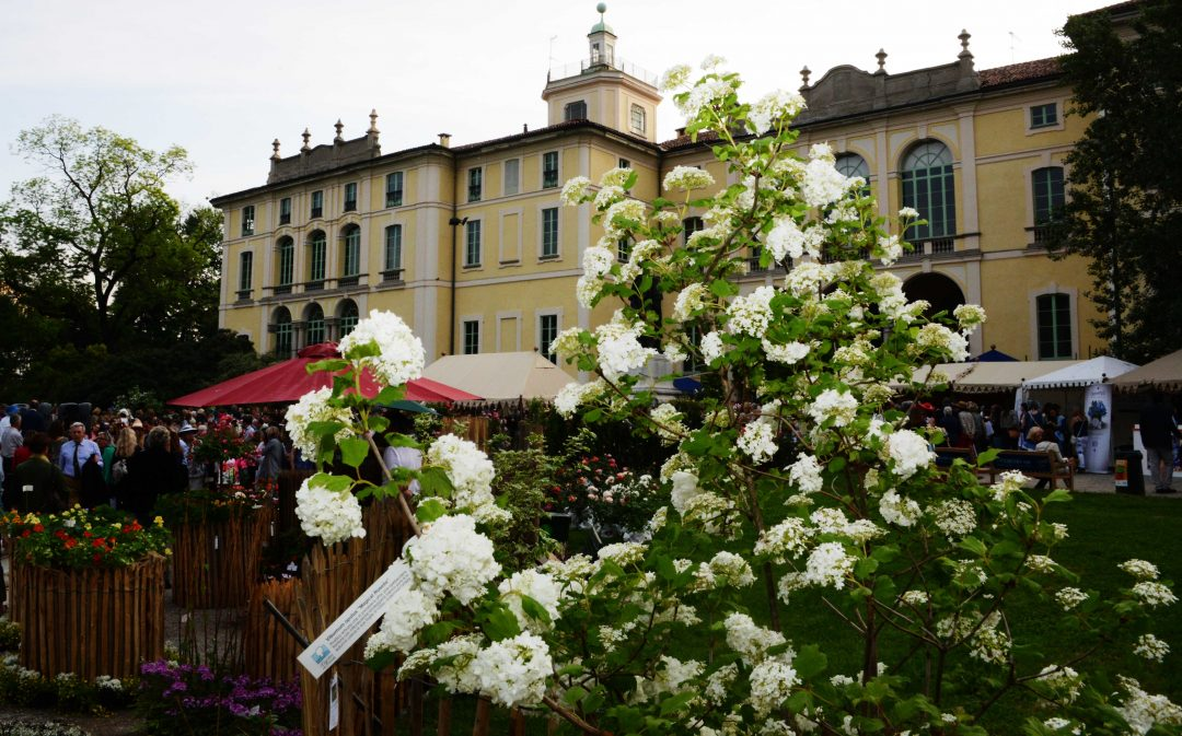 Festival di Primavera
