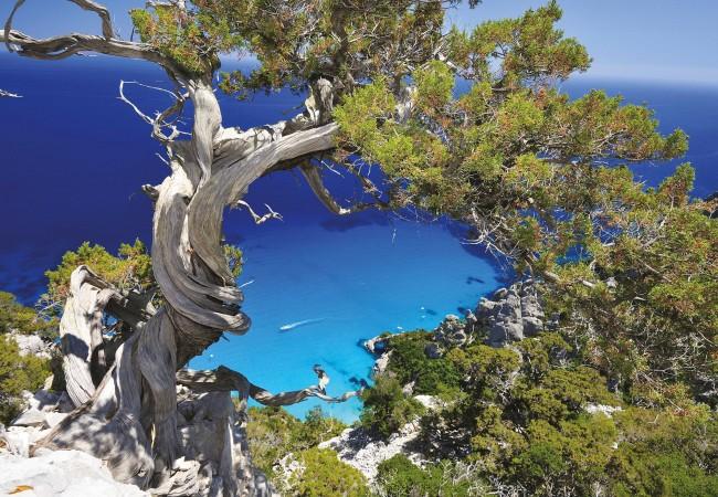 Al Mare In Sardegna Nei Caraibi Ditalia Dove Viaggi