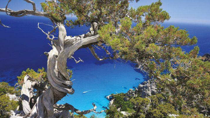 Foto Sardegna: dalla Costa Rossa all'Ogliastra