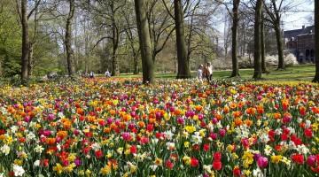 Floralia-Brussels