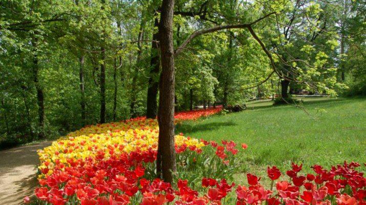 Foto Classici e romantici: 8 giardini italiani
