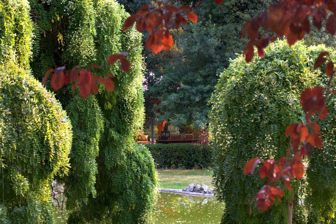 Classici e romantici: 8 giardini italiani