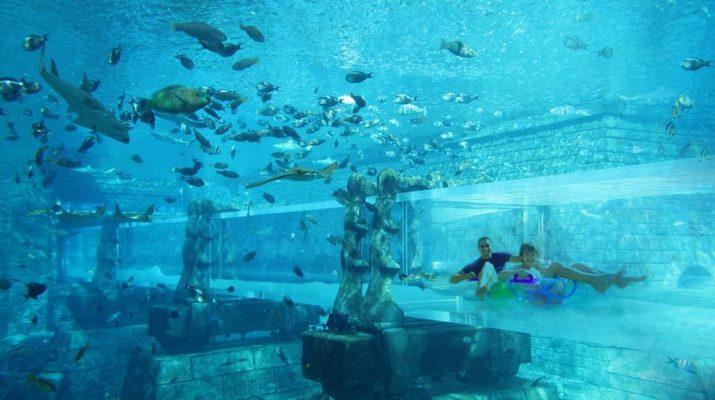 Foto Scivoli d'acqua. I più spettacolari negli hotel