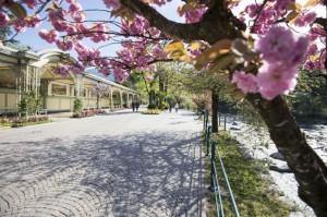 Merano: small city