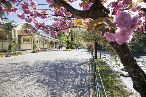 Foto Merano: small city