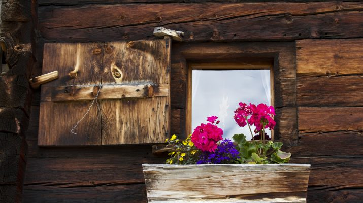 Foto Chalet in affitto e malghe gourmet: l'estate in Veneto e Trentino Alto Adige