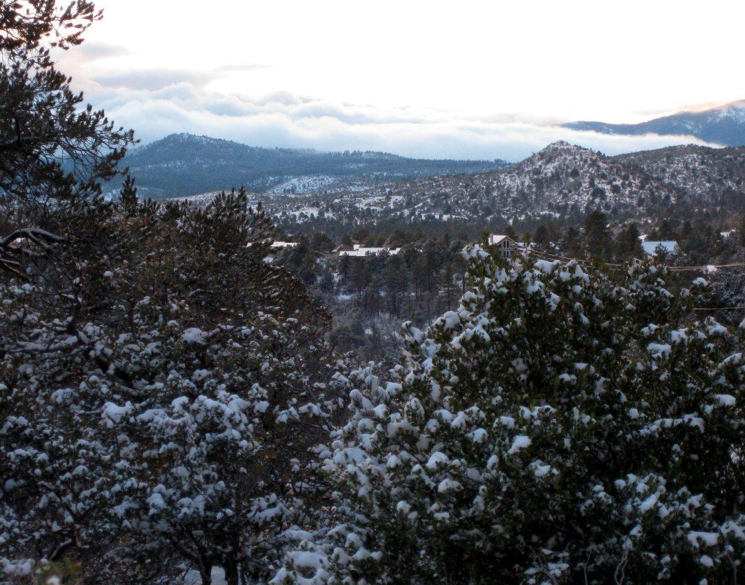 All'inseguimento della primavera: 12 tappe dal clima ideale