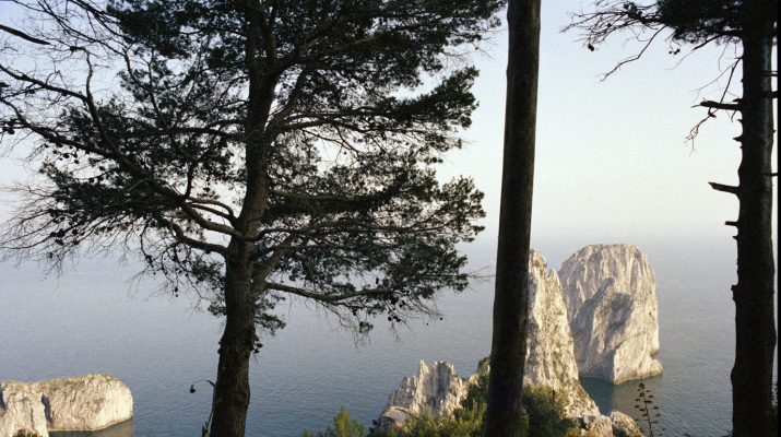 Foto Il Festival del Paesaggio a Capri