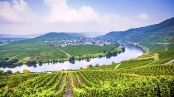 16 Valle della Mosella – Germania