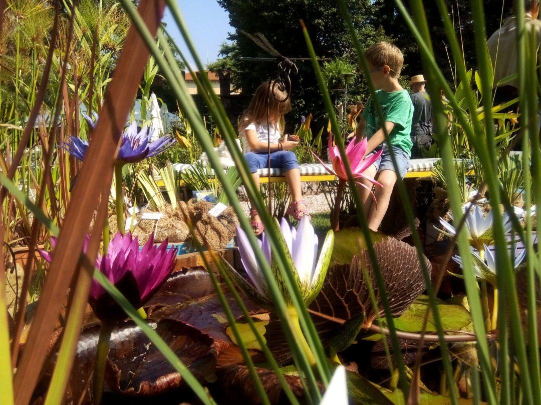 Viridalia, la mostra-mercato sul giardino biodinamico