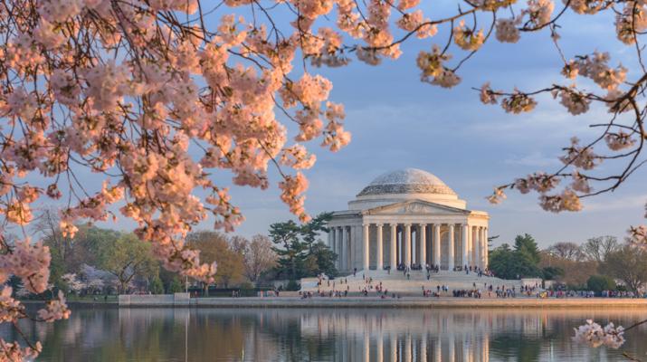 Foto Stati Uniti: 50 meraviglie per 50 Stati