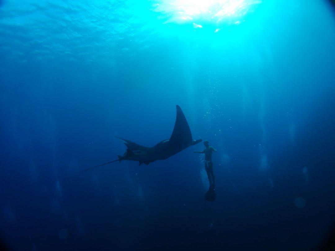 Sull'Oceano con lo smartphone
