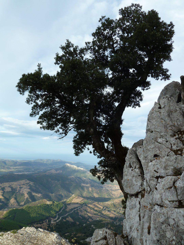 Sardegna da insider: il meglio da scoprire ora