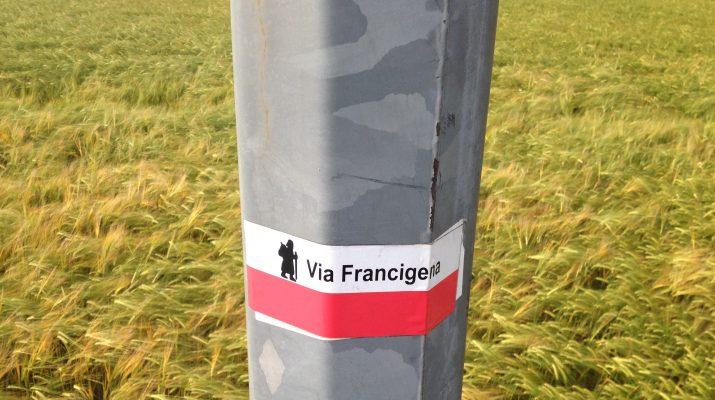 Foto La Via Francigena: il tratto della Pianura Padana