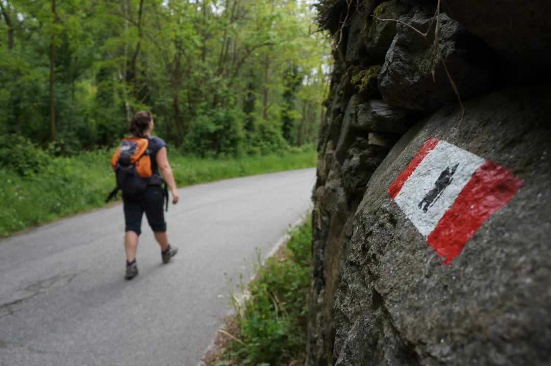 La Via Francigena: il tratto della Pianura Padana