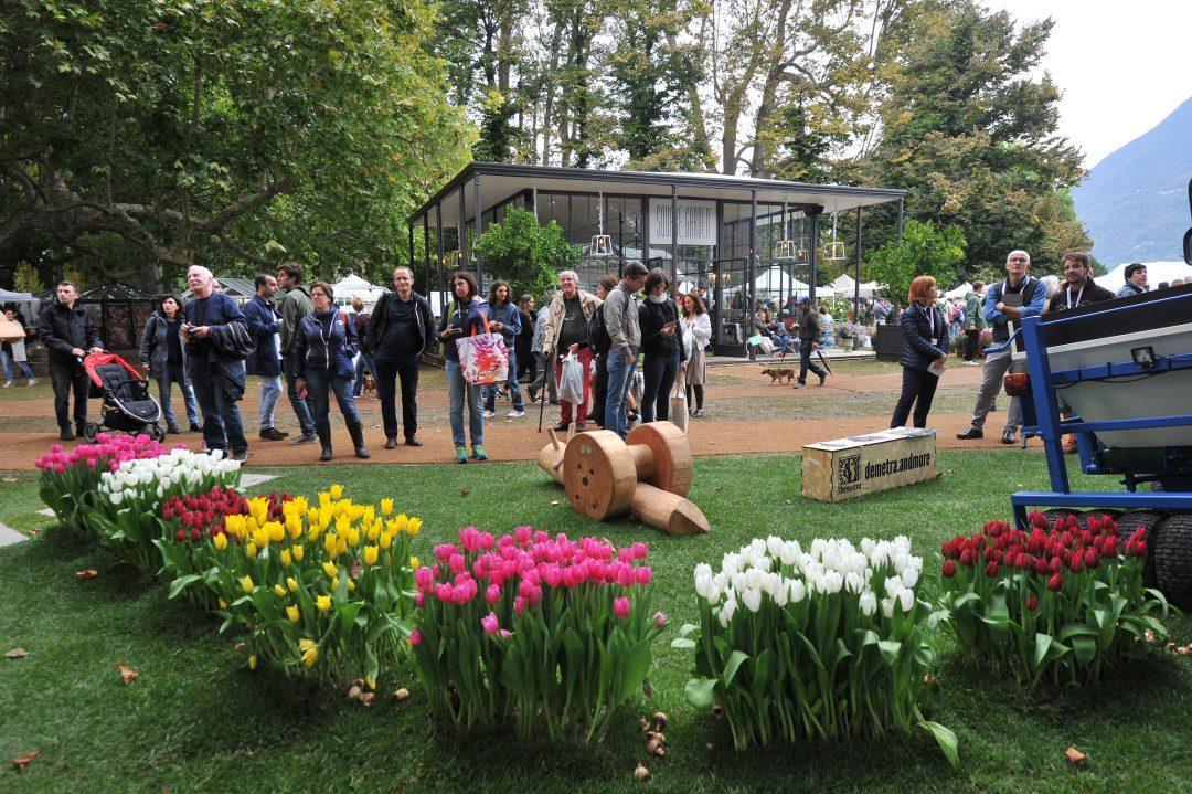 Orticolario: festa verde nello spazio di DOVE