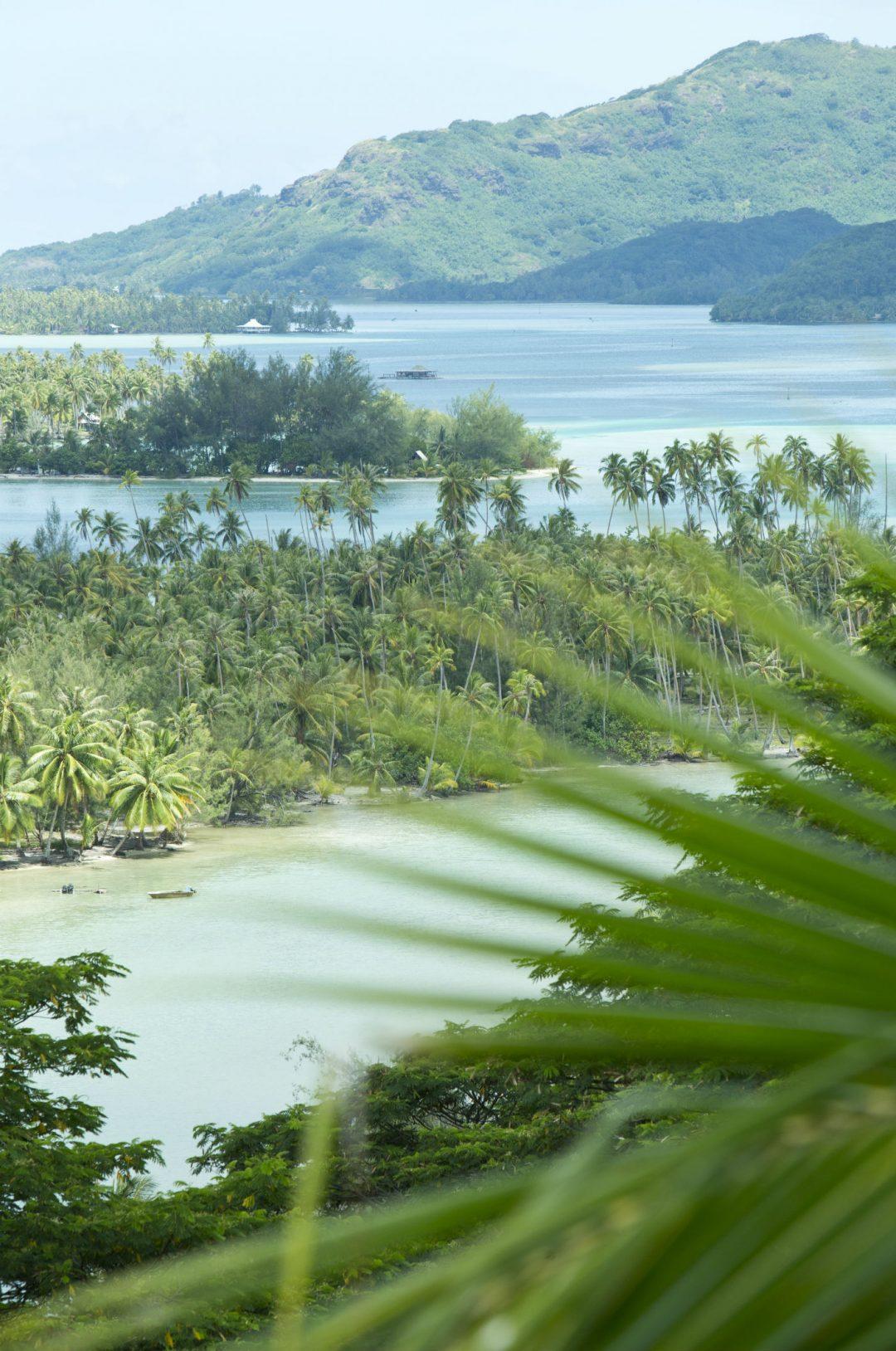 """Viaggio nell'Eden: """"Le Isole di Tahiti"""""""