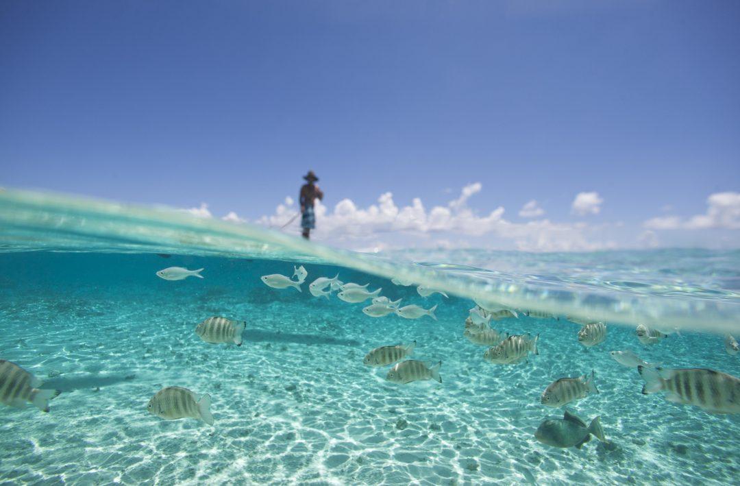 Le Isole di Tahiti, tra sport e avventura