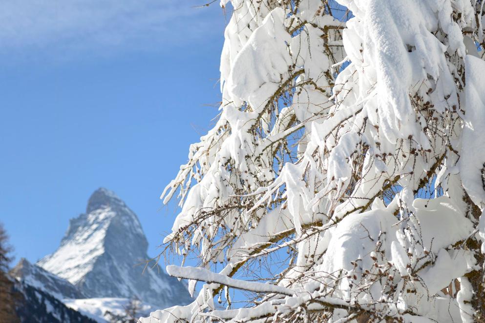 Il lusso sulla neve: dieci resort di lusso