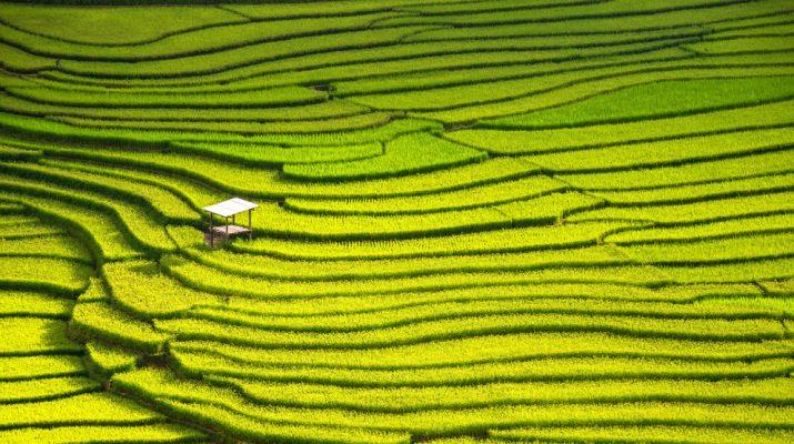 Foto Le dieci migliori destinazioni al mondo per la fotografia di viaggio