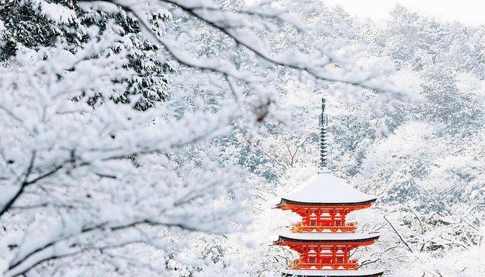 Foto La neve trasforma Kyoto in una città delle meraviglie