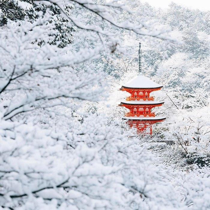 La neve trasforma Kyoto in una città delle meraviglie