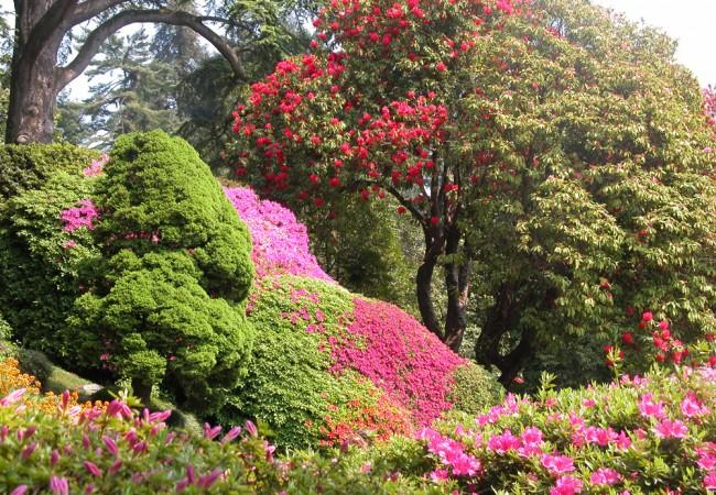 Fioriture di primavera le pi belle d 39 italia dove viaggi - Casting giardini da incubo 2017 ...