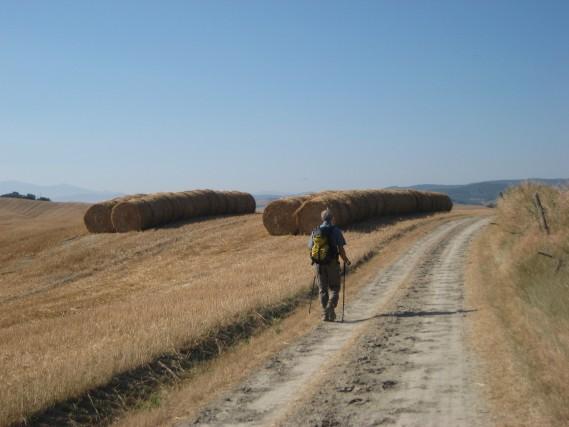 In cammino sulla Via Francigena, da Siena a Viterbo