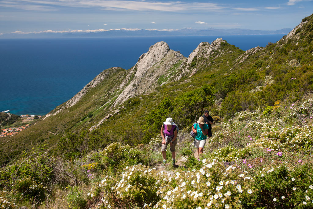 Dove Academy: trekking all'isola d'Elba : Foto Dove Viaggi
