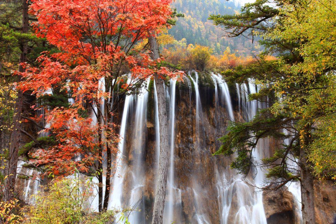 Foreste del Jiuzhaigou (Cina)