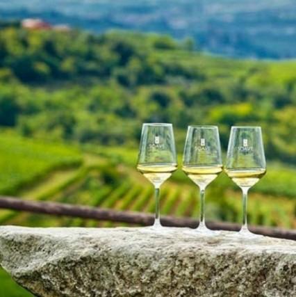 Vinitaly: Verona si tinge di viola