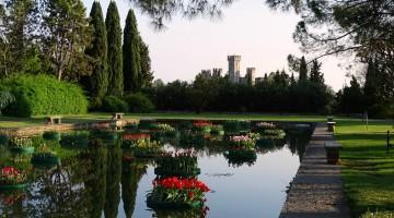 Tulipanomania:  weekend a Borghetto di Valeggio sul Mincio, tra mulini e tulipani galleggianti