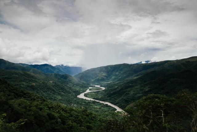 Le piantagioni di caffè a Quillabamba, in Perù, nella regione di Cusco.